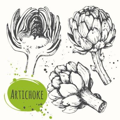 Картина Aartichoke. Набор рисованной артишок. Свежие органические продукты питания.