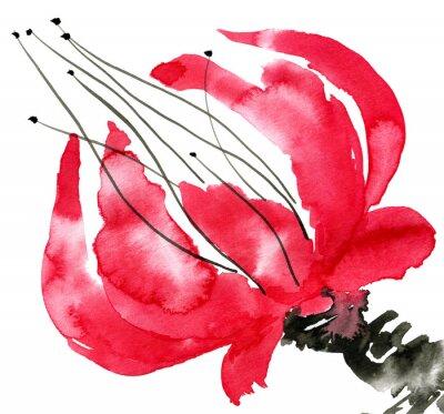 Картина Акварель и чернила иллюстрации в стиле суми-е, и-син. Восточные традиционной живописи. Изолированные на белом фоне.