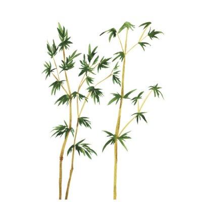 Картина Абстрактные дикие деревья бамбука на белом фоне. Ручной обращается акварель векторные иллюстрации.
