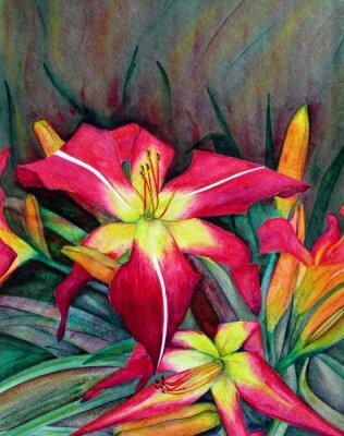 Картина Акриловые иллюстрации ярких цветов. Цветы лилии день.