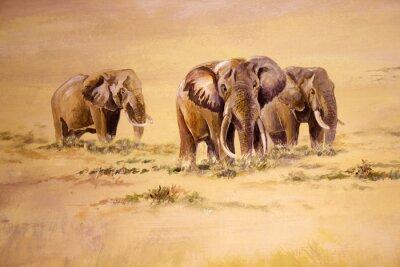 Картина Африканский слон, Южная Африка