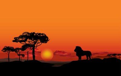 Картина Африканский пейзаж с животным лев силуэт. Savanna фоне заката