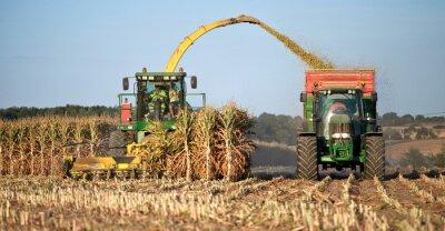 Картина Сельское хозяйство ан Франция