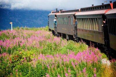 Картина Аляскинские поезда
