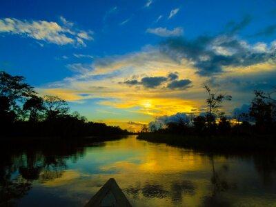Картина Река Амазонка