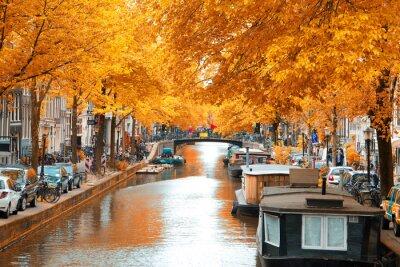 Картина Амстердам.