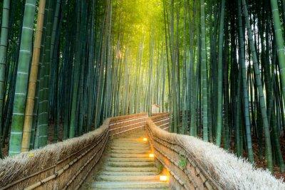 Картина Арашияма Бамбуковый лес