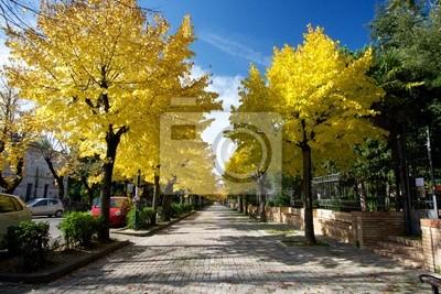 Осень Путь