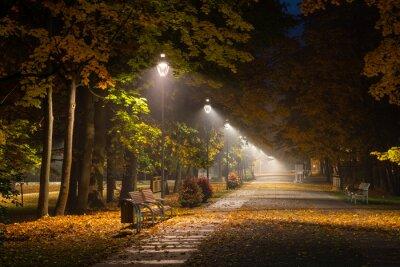 Картина Осенняя аллея в парке ночью в Констанцине Езёрна, Мазовецкое, Польша