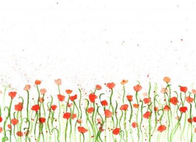 Картина Фон с ручной рисунок акварельными красные маки на белом фоне. Бесшовные баннер с цветами. Ручная роспись цвет копия пространства границы.