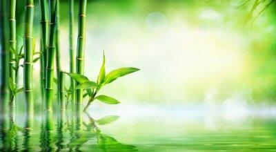 Картина Бамбук фон - Пышная листва с отражением в воде