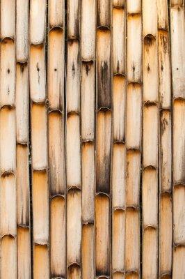 Картина Бамбук ствол фон.