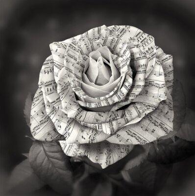 Картина Красивые черно-белые розы с запиской на лепестках