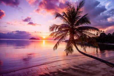 Картина Красивый яркий закат на тропическом райском пляже