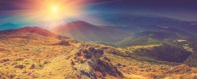 Картина Красивый панорамный пейзаж в горах на солнце.