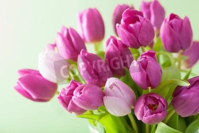 Картина красивый фиолетовый фон тюльпан цветы