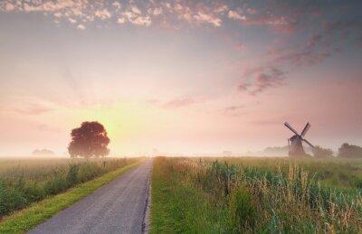 Картина красивый летний восход солнца на голландской сельхозугодий