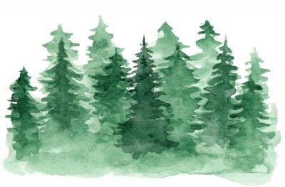 Картина Красивый акварельный фон с зеленым хвойным лесом. Таинственный ель или сосны иллюстрации для зимнего дизайна Рождество, изолированных на белом фоне