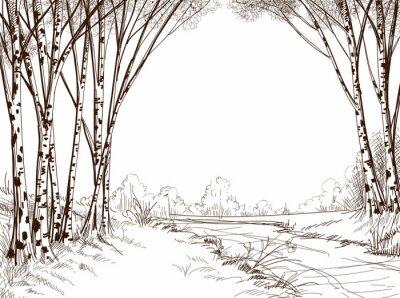 Картина Береза лес, графический фон