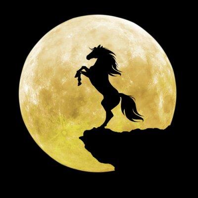 Картина черный силуэт лошади