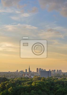 Лодзь-панорама Miasta