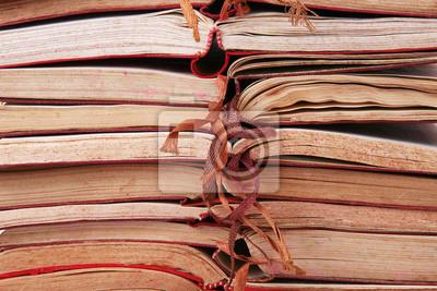 Картина книги и