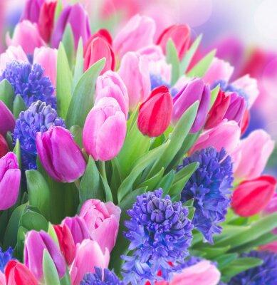 Картина букет синих гиацинтов и тюльпанов