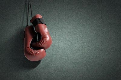 Картина боксерские перчатки