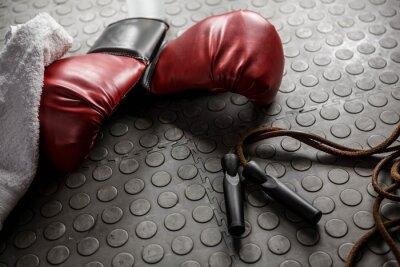 Картина Боксерские перчатки и веревки