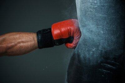 Картина Обучение Бокс и груша