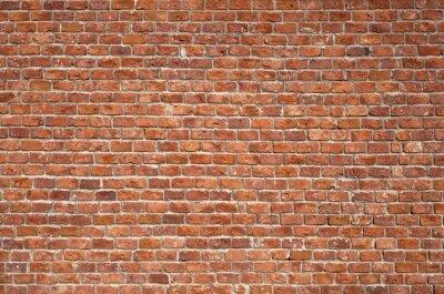 Картина Фоне кирпичной стены
