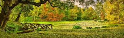 Картина Мост сцены осенью - парк Липник (Текето), деревня Николово, Болгария. Современное искусство иллюстрации масляной живописи