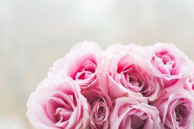 Картина Яркий фон розовые розы