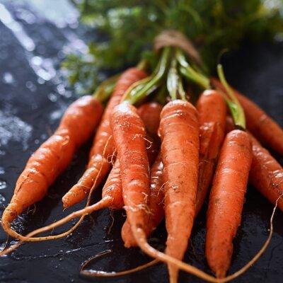 Картина букет свежесобранных морковь крупным планом