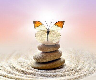 Картина Бабочка и камни баланс