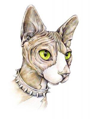 Картина Канадский сфинкс в ошейнике с шипами. Голая кошка на белом фоне. Акварельный рисунок