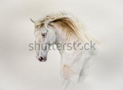 Картина акварельный портрет люситано лошади