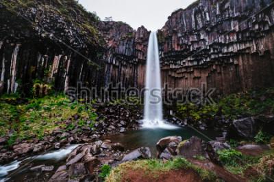 Картина Удивительный вид на водопад Свартифосс. Живописное изображение красивой природы. Популярная достопримечательность. Расположение Национальный парк Скафтафелль, ледник Ватнайокулль, Исландия, Европа. Кр