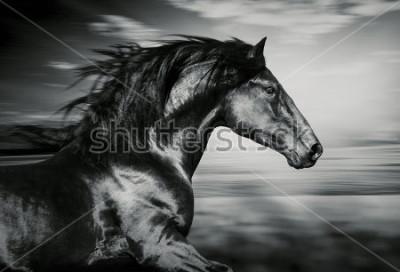 Картина черно-белое фото