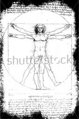 Картина Отография Витрувианского Человека Леонардо да Винчи из 1492 на текстурированном фоне.
