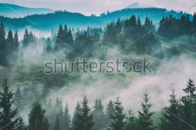 Картина Туманная долина Карпатских гор после дождя. Гранж старинные стилизация.