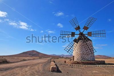 Картина Канарские острова, Испания