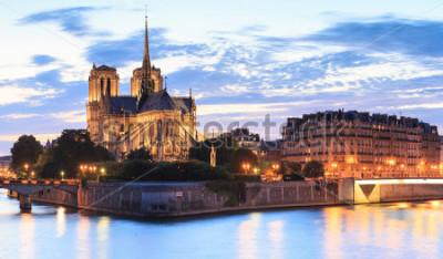 Картина Панорама острова цитировать с собором Нотр-Дам де Пари в Париже, Франция.