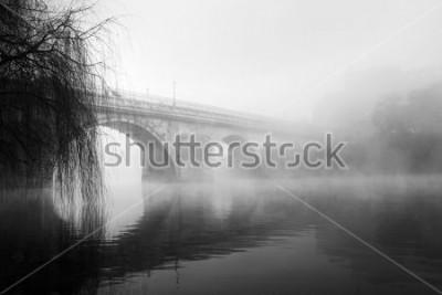 Картина Историческая часть Барселуш на туманное утро (HDR черно-белые фото)