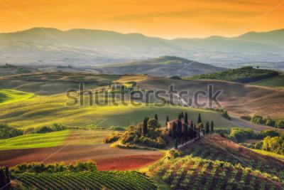 Картина Тоскана пейзаж на рассвете. Типичный для региона тосканский хутор, холмы, виноградники. Италия