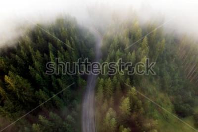Картина Летний вид на горную дорогу