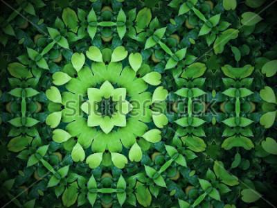 Картина Абстрактный зеленый фон, зеленые листья в форме сердца с эффектом калейдоскопа