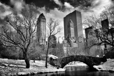 Картина New York City - Central Park in winter -Gapstow bridge