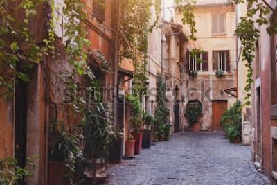 Картина уютная улица в Риме, Италия