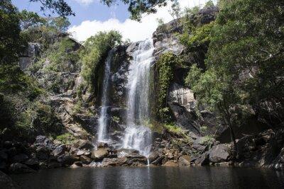 Картина Cascada гранд кон abundante Агуа ан-эль-медио де уна Foresta. Куктаун, Квинсленд, Австралия